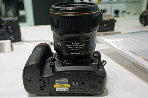 ASD09410.JPG