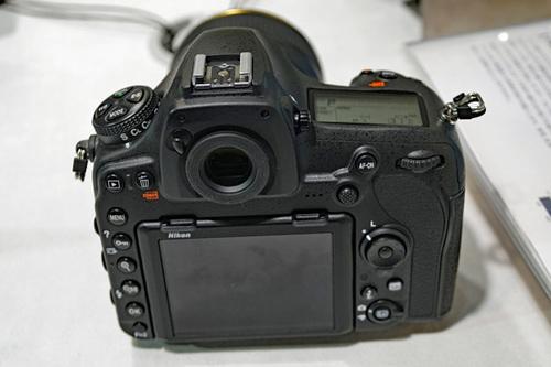 ASD09415.JPG